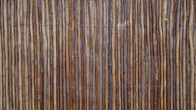Holz schilf textur