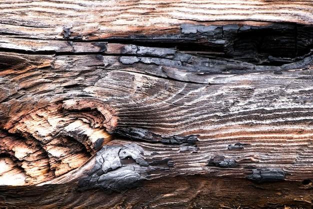Holz textur. hintergrund alte platten