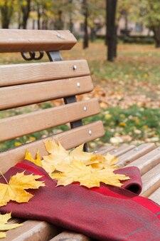 Holzbank und ein schal mit gelben trockenen blättern im stadtpark. herbstthema.