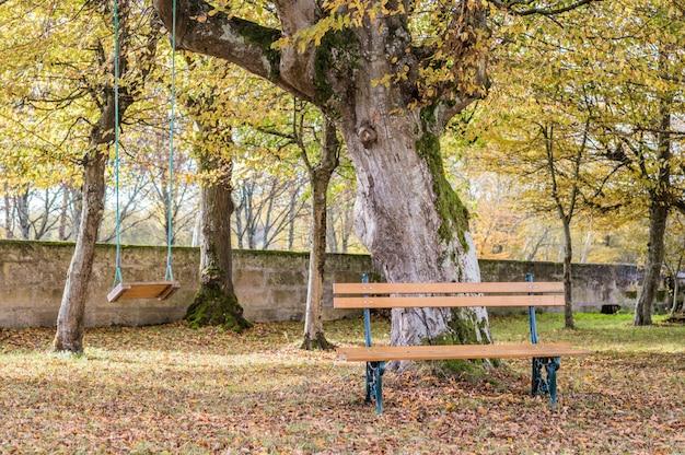 Holzbank und schaukel im herbstgarten