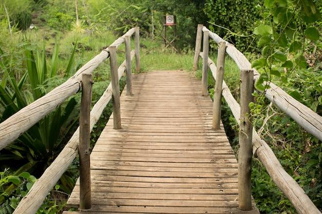 Holzbrücke über den abgrund mit aloe und kakteen.
