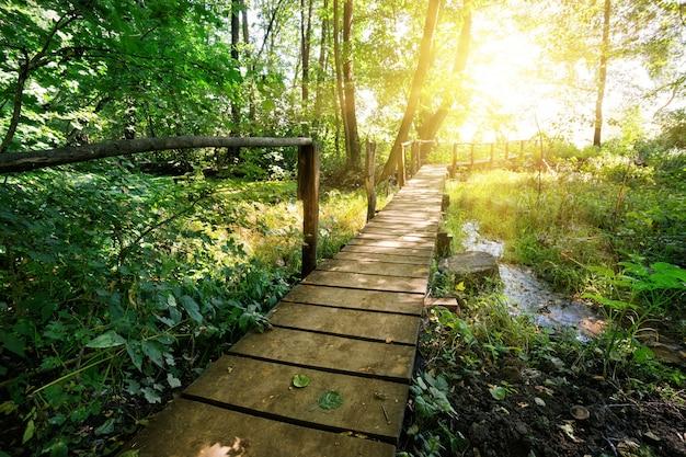 Holzbrücke über den fluss im wald