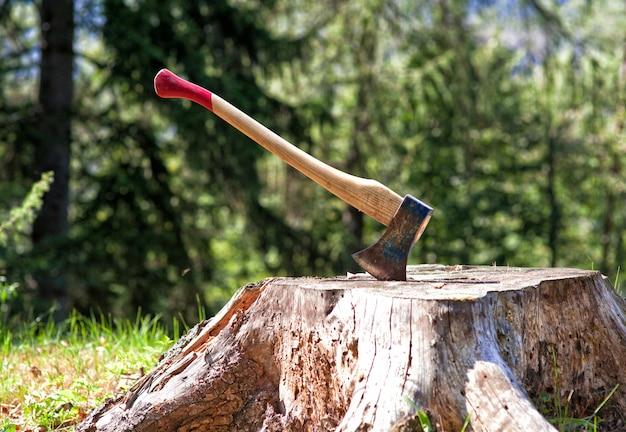 Holzfäller axt