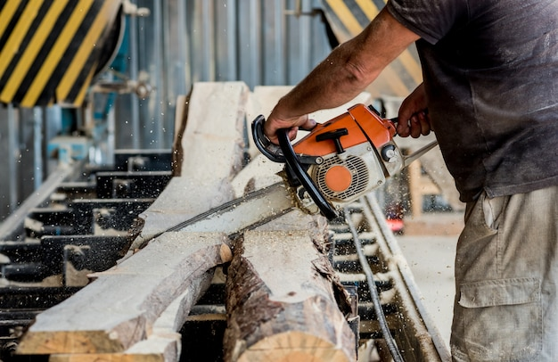 Holzfäller, der baum mit kettensäge auf sägewerk schneidet. modernes sägewerk. industriesägebretter aus baumstämmen.
