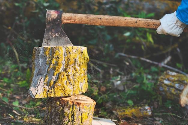 Holzfäller, der holz aufteilt und brennholz mit alter axt schneidet