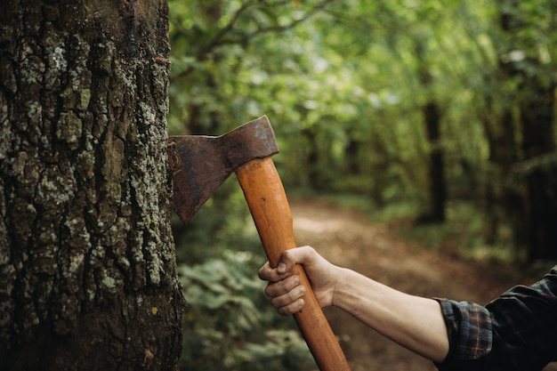 Holzfäller, der im wald eine nahaufnahme der axt hält