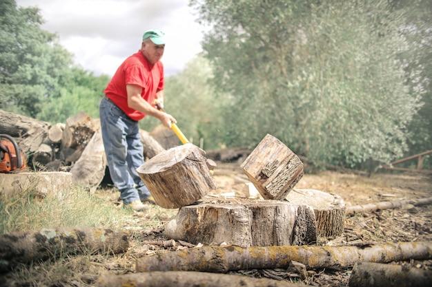 Holzfäller in arbeit