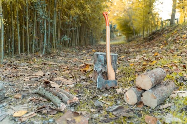 Holzfälleraxt mit kiefernholz-herbsthintergrund