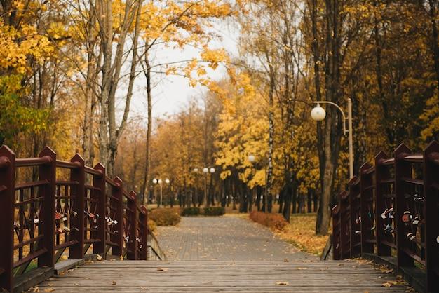 Holzgasse in einem park mit bunten bäumen
