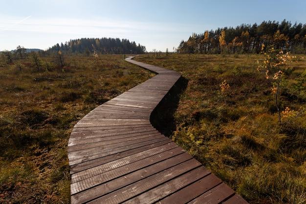 Holzgepflasterter weg, der im herbst in russland bis zum horizont führt.
