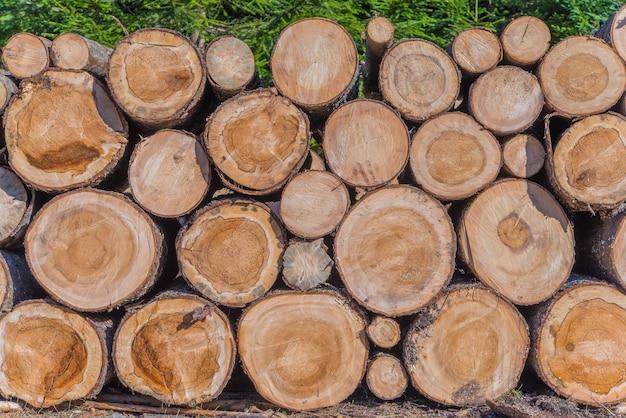 Holzholzindustrie