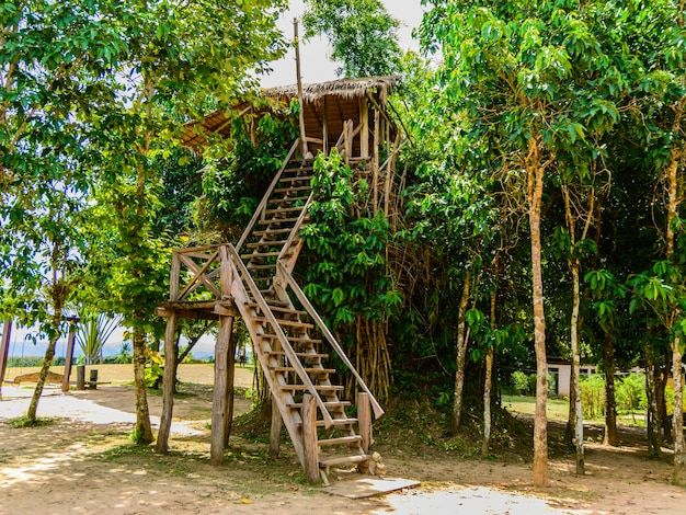 Holzhütte auf bambus für sehen tier und blick auf kebtawan-klippe