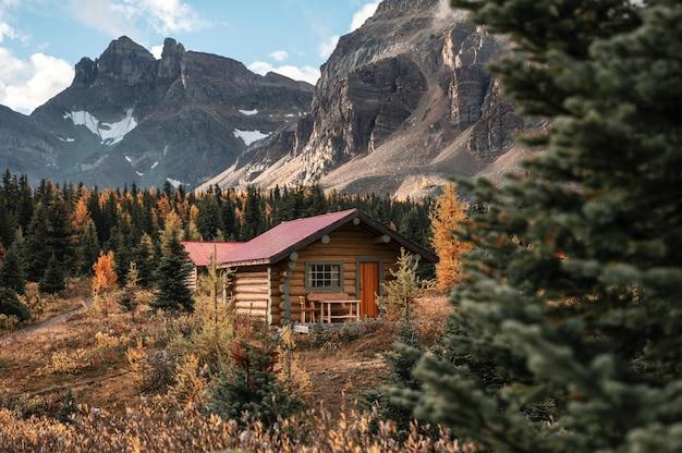 Holzhütten mit felsigen bergen im herbstwald im assiniboine provincial park, bc, kanada,