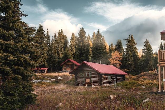Holzhütten mit sonnenschein im herbstwald am morgen im assiniboine provinzpark