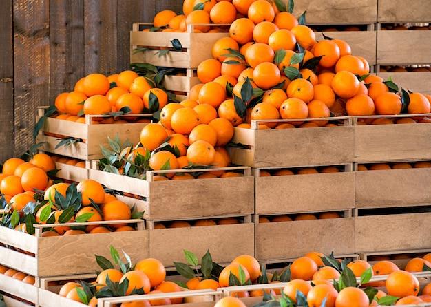 Holzkisten mit frischen reifen orangen