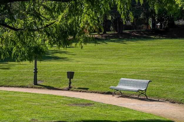 Holzlattenbank in einem grünen park mit gepflegten rasenflächen und waldbäumen an der seite eines gehwegs oder pfades