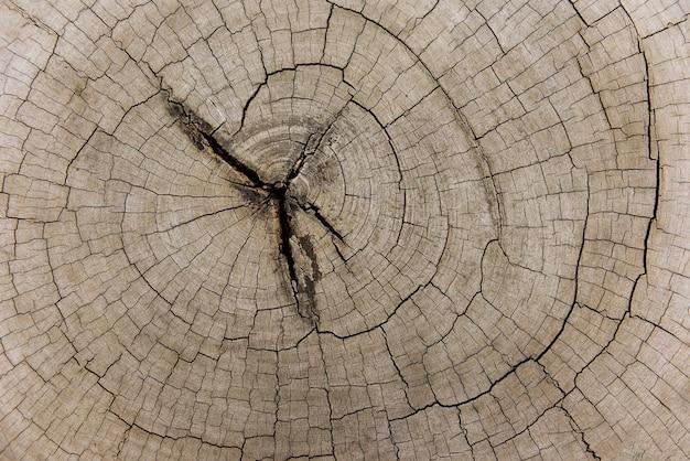Holzschnitt hintergrund
