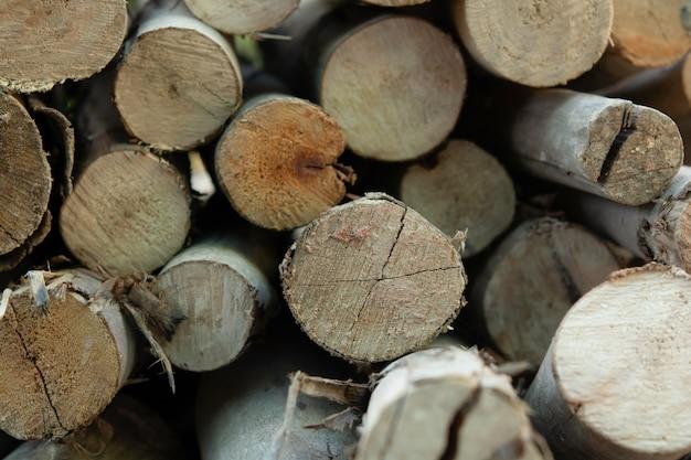 Holzstämme stapeln, baumstümpfe