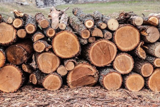Holzstämme von kiefernwäldern im wald, gestapelt auf einem stapel