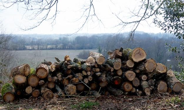Holzstapel für den kamin