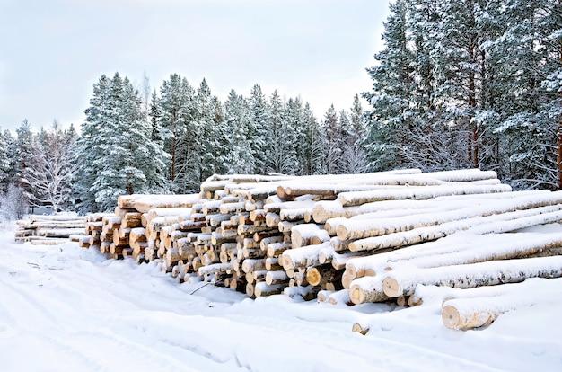 Holzstapel im winter auf einem von bäumen, schnee, himmel