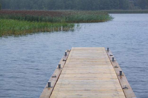 Holzsteg und gras am seeufer an einem sonnigen sommertag