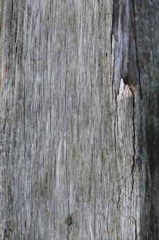Holzstruktur hintergrund, holzbohlen in naiural grauer farbe. foto in hoher qualität