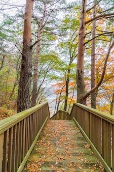 Holztreppe im park