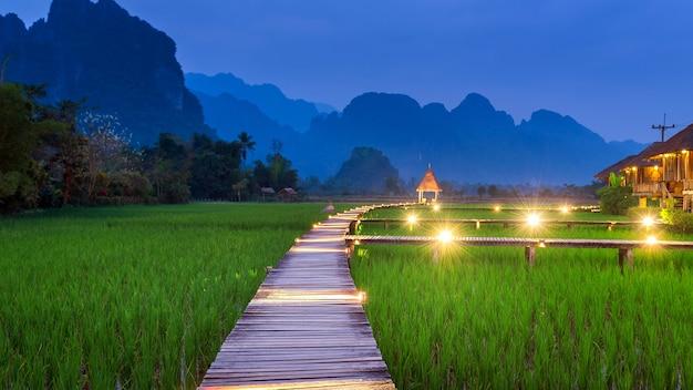 Holzweg und grünes reisfeld bei nacht in vang vieng, laos.