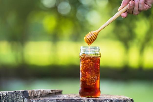 Honig, der vom honigschöpflöffel auf natürlichem grün tropft