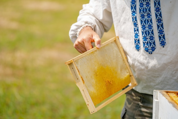 Honigzelle mit bienennahaufnahme an einem sonnigen tag. imkerei. bienenhaus