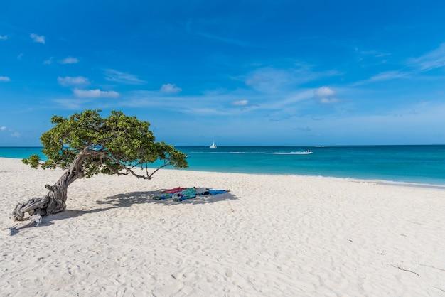 Horizontale aufnahme der aussicht auf den strand und das meer, mit handtüchern unter einem baum in aruba ausgelegt