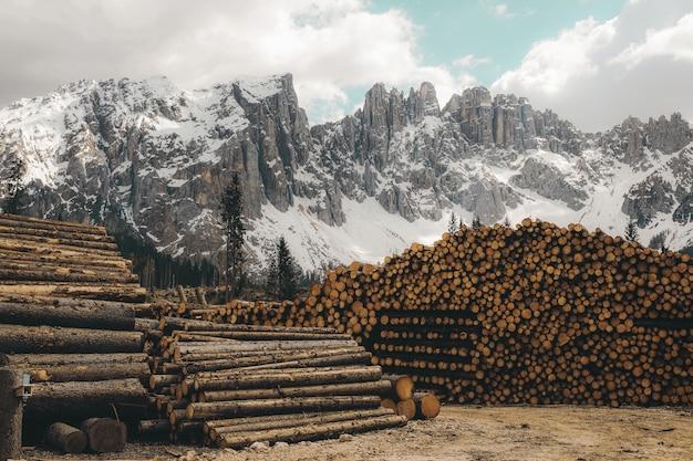 Horizontale aufnahme eines haufens von brennholzstämmen mit felsigen bergen, die mit schnee bedeckt sind