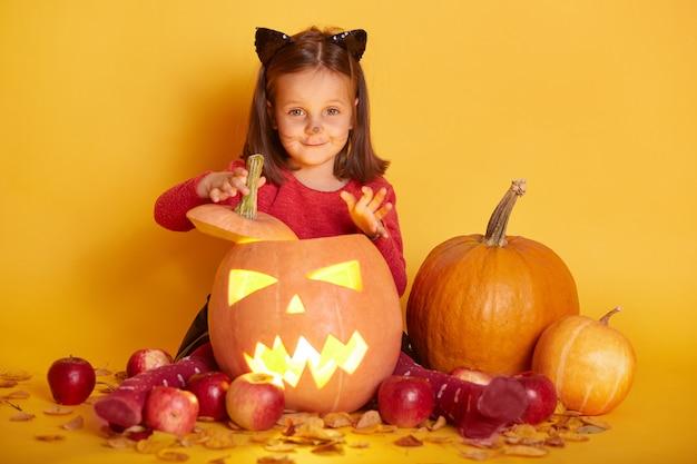 Horizontaler schuss des mädchens, das über herbsternte, kürbis, äpfel sitzt. charmantes kleinkind mit katzenohren und schnurrbart, das mit fröhlichem ausdruck direkt in die kamera schaut. halloween-dekorationskonzept.