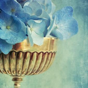 Hortensienblume
