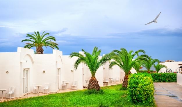 Hotel mit bungalows auf einem grünen rasen unter palmen und einer möwe am himmel