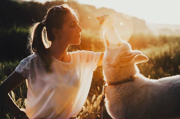 Hübsche junge frau, die entzückenden hundetrick während des spaziergangs in der natur am sonnigen tag lehrt