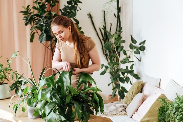Hübsche junge frau wäscht die blätter von zimmerpflanzen zu hause