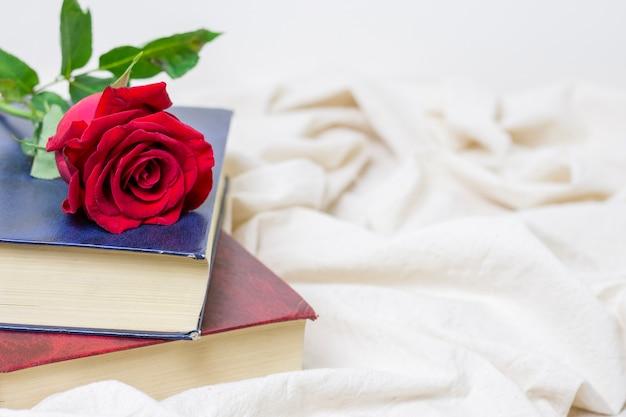 Hübsche rotrose der nahaufnahme auf einem buch