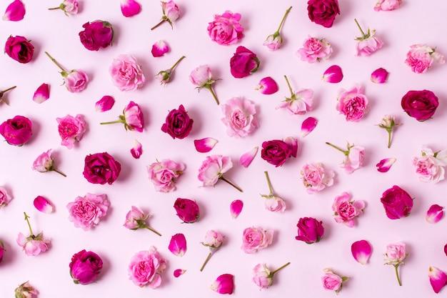 Hübsche zusammenstellung des konzeptes der rosafarbenen blumenblätter