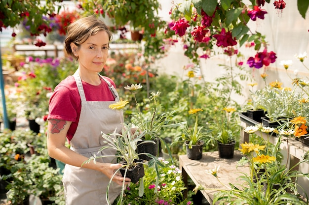 Hübscher junger gärtner in der schürze, der topfblumen hält, während er neue arten von pflanzen auswählt, um auf dem markt zu verkaufen