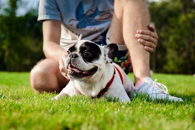 Hübscher mann, der mit französischer bulldogge auf gras im park sitzt