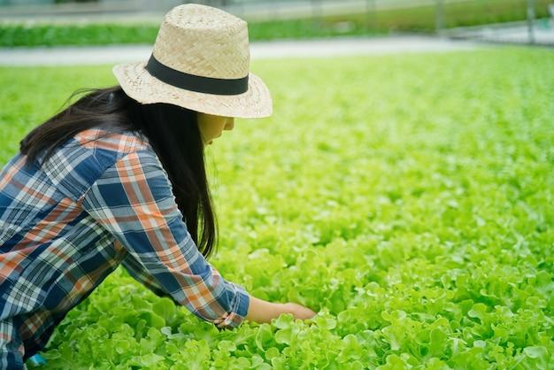 Hübsches mädchen des jungen asiatischen landwirts, das im gemüsewasserkulturbauernhof mit glück arbeitet