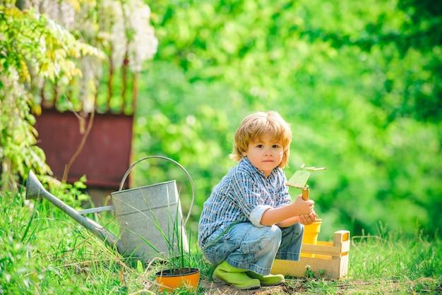 Hübsches süßes kind, das im schönen garten arbeitet und spielt, süßer junge, der den sprössling auf feldki...