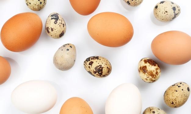 Hühner- und wachteleier auf einem weißen