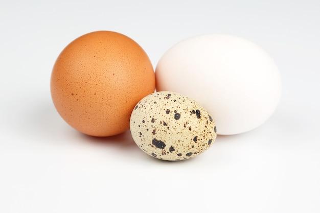 Hühner- und wachteleier schließen