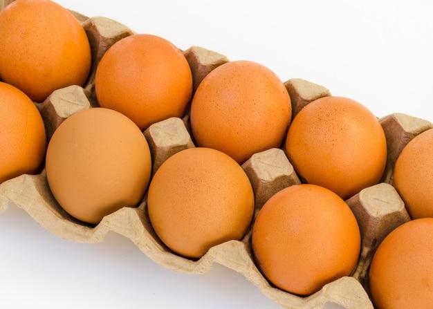 Hühnerbraunei-nahaufnahme