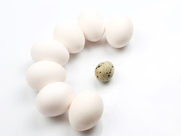 Hühnereier auf weiß