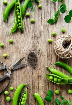 Hülsen der grünen erbsen mit erbsenblättern auf holztisch