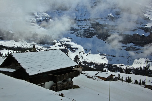 Hütten in den schweizer alpen der jungfrauregion. blick vom laufenden zug.